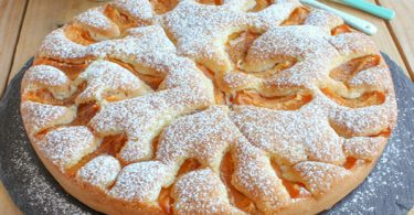 Moelleux aux abricots